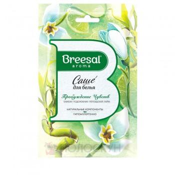 Ароматичне саше для білизни Пробудження почутів Breesal