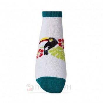 Жіночі шкарпетки сліди з туканом 23-25р V&T